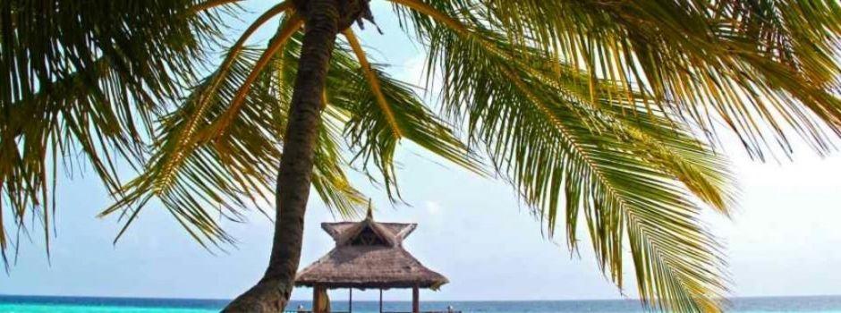 Belastingparadijs voor kleine ondernemers - Blogs - Nieuws - Sanacount