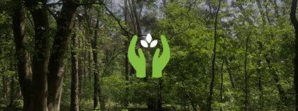 Samen aan de slag om je duurzame doelen te realiseren - BLogs - Nieuws - Sanacount